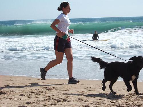 犬を連れてジョギングする女性
