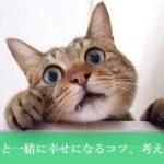 猫と一緒に幸せになるコツ、考え方と心構え