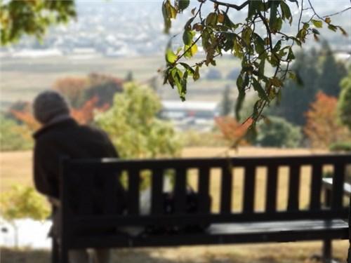 ベンチに座る高齢者の後姿