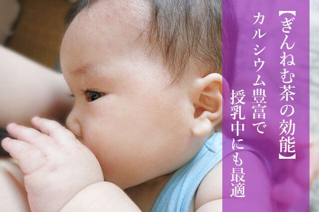 知らなきゃ大損! ぎんねむ茶(ぎん茶)の効能 ダイエットや産後に最適